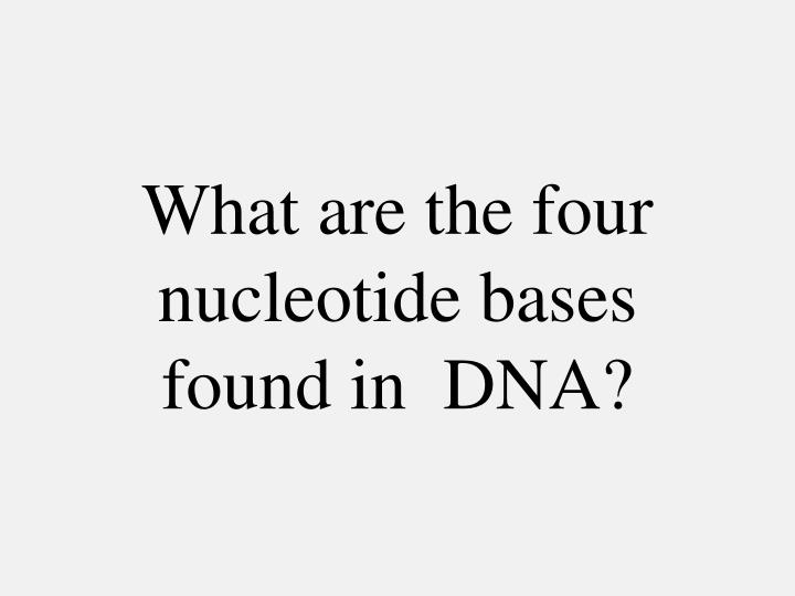 What are the four nucleotide bases found in  DNA?