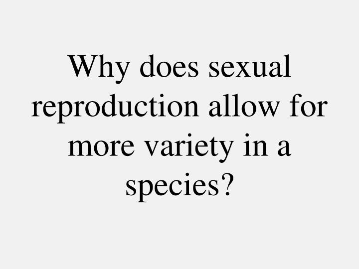 Why does sexual reproduction allow for more variety in a species?