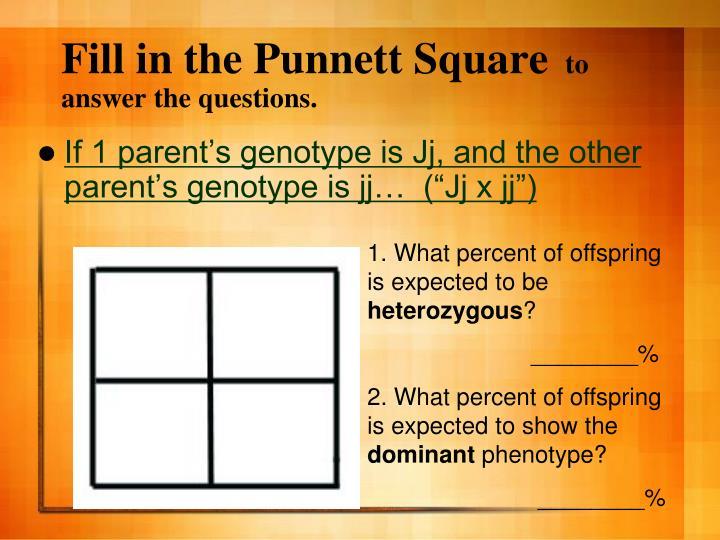 Fill in the Punnett Square