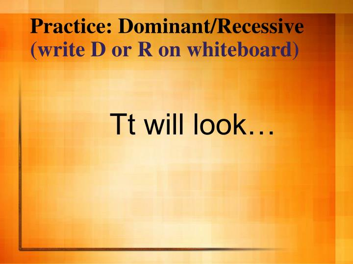 Practice: Dominant/Recessive