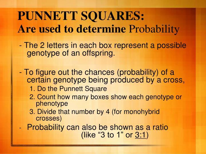 PUNNETT SQUARES: