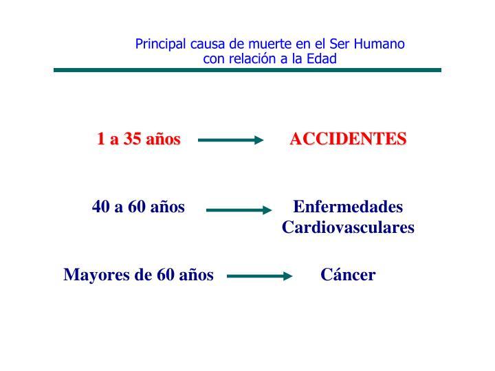 Principal causa de muerte en el Ser Humano