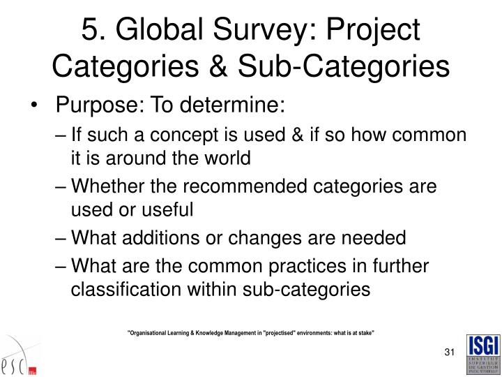 5. Global Survey: Project Categories & Sub-Categories