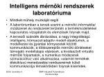 intelligens m rn ki rendszerek laborat riuma