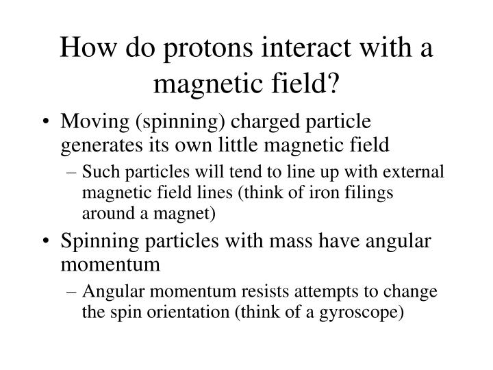 How do protons interact with a magnetic field?