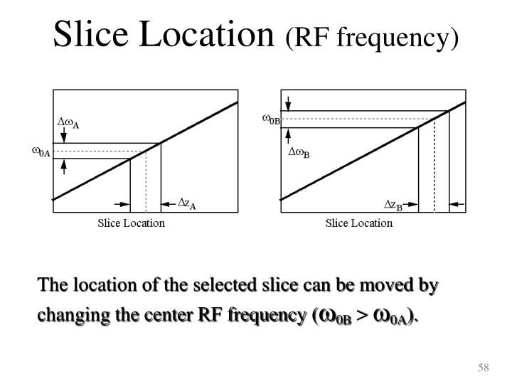 Slice Location
