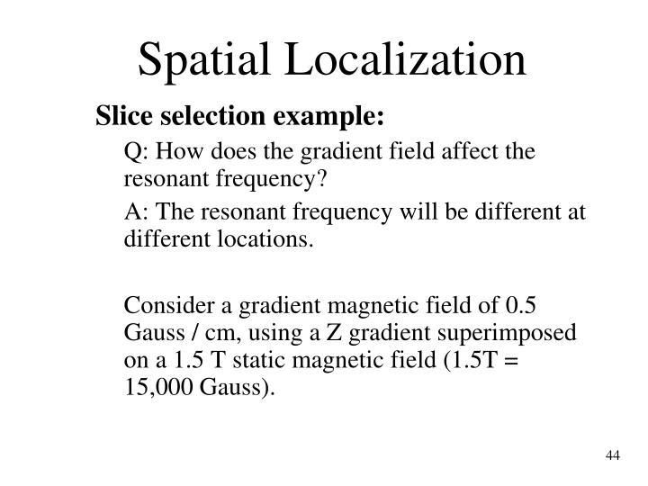 Spatial Localization