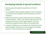 developing subsidy special conditions