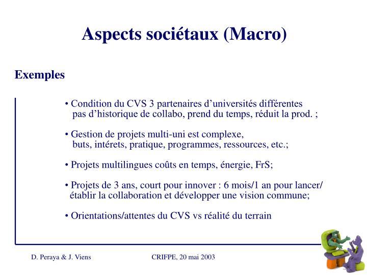 Aspects sociétaux (Macro)