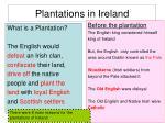 plantations in ireland