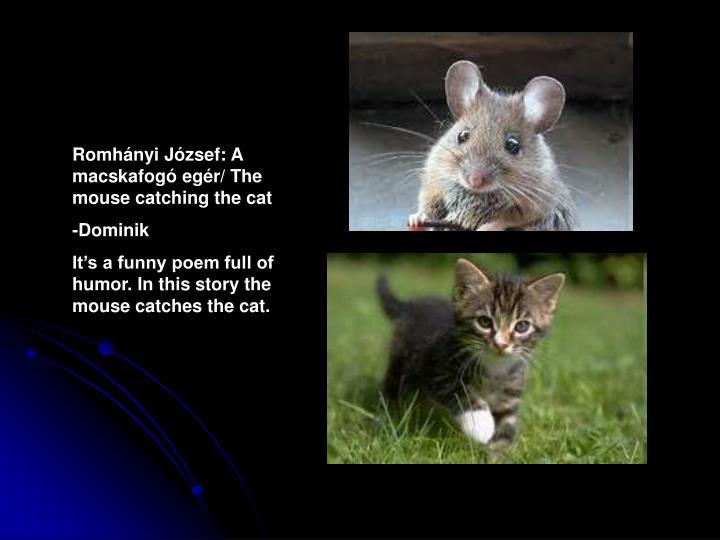 Romhányi József: A macskafogó egér/ The mouse catching the cat