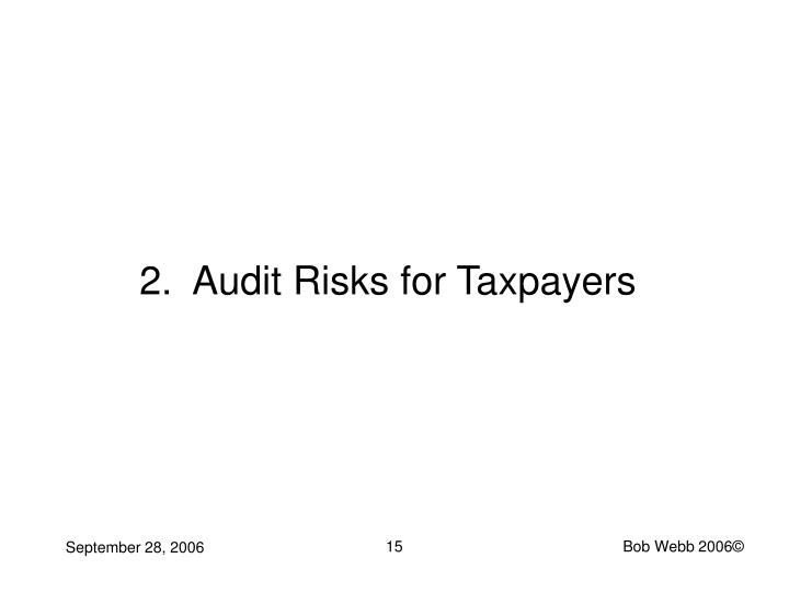 2.  Audit Risks for Taxpayers