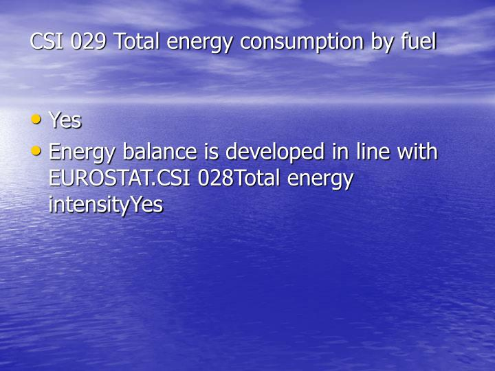 CSI 029 Total energy consumption by fuel
