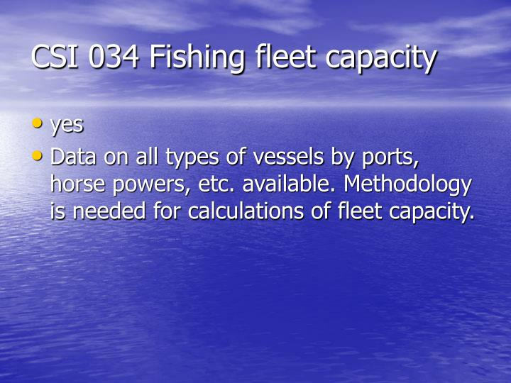 CSI 034 Fishing fleet capacity