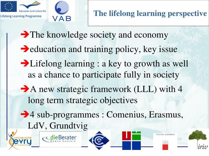 The lifelong learning perspective