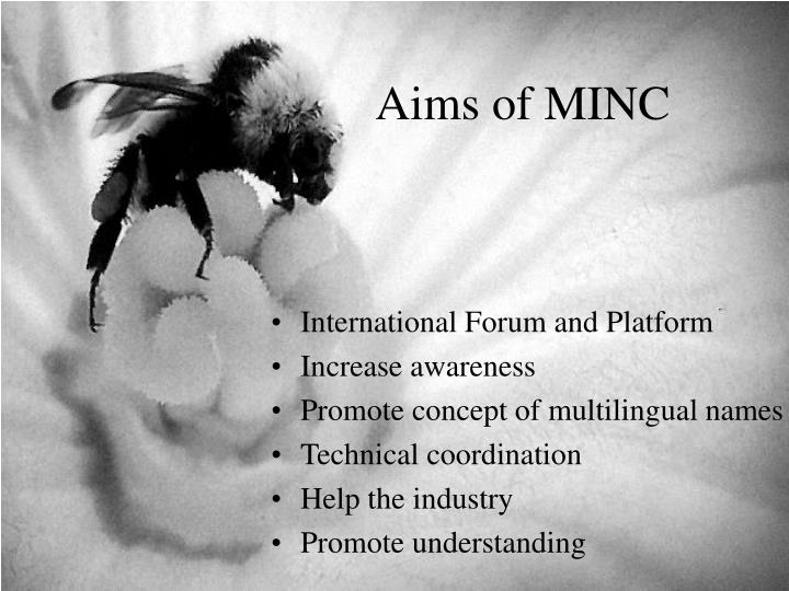 Aims of MINC