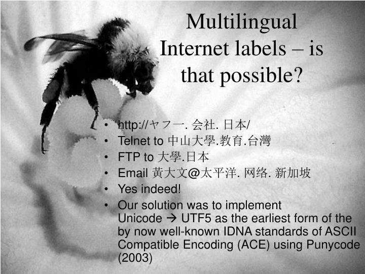 Multilingual Internet labels – is that possible?