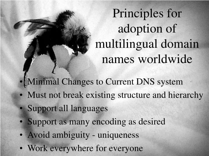 Principles for adoption of multilingual domain names worldwide