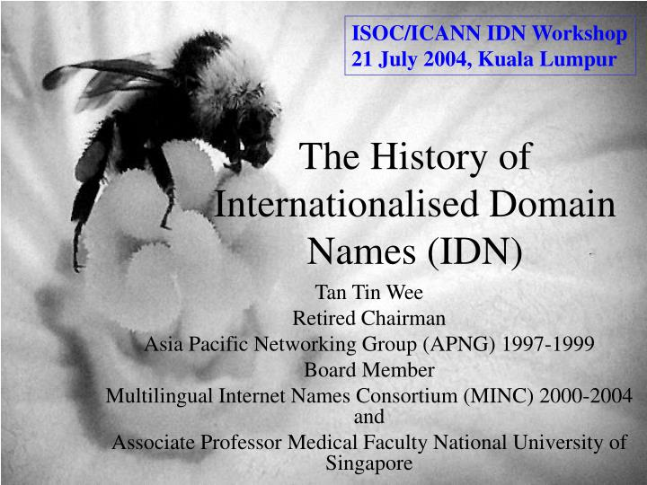 The history of internationalised domain names idn