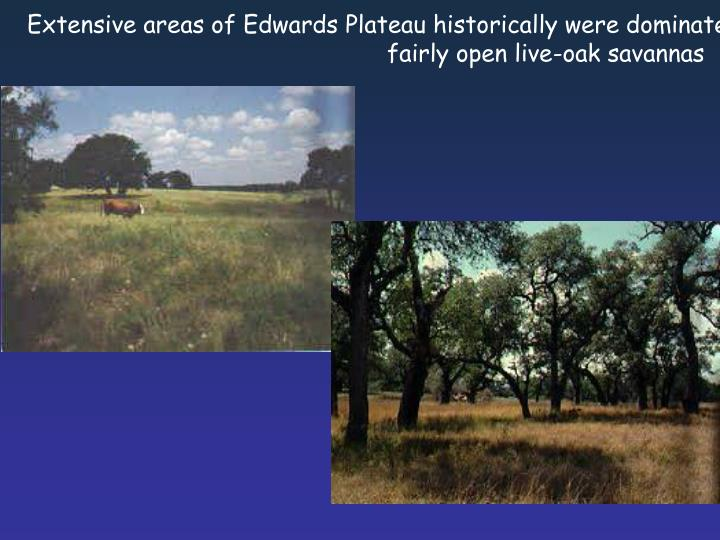 Extensive areas of Edwards Plateau historically were dominated by