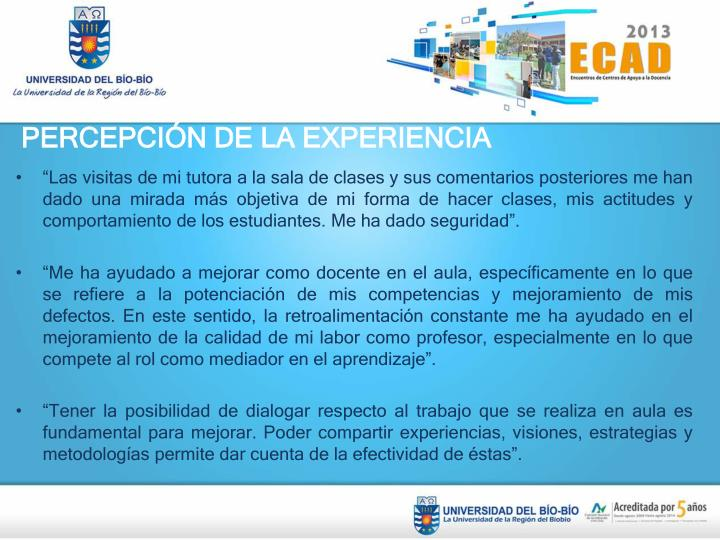 PERCEPCIÓN DE LA EXPERIENCIA