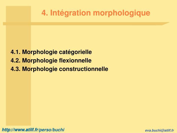 4. Intégration morphologique