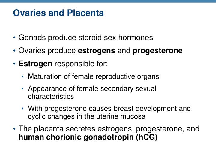 Ovaries and Placenta