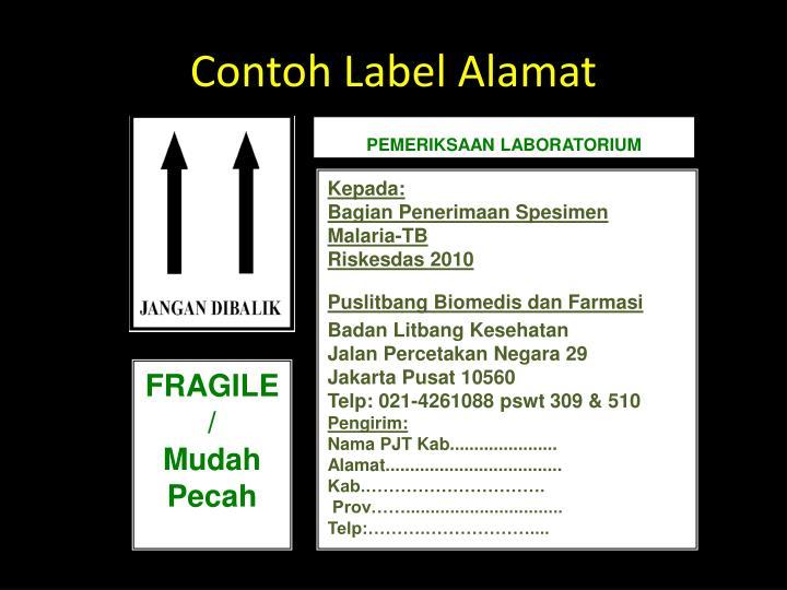 Contoh Label Alamat