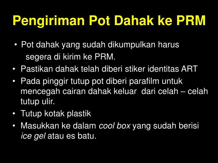 Pengiriman Pot Dahak ke PRM