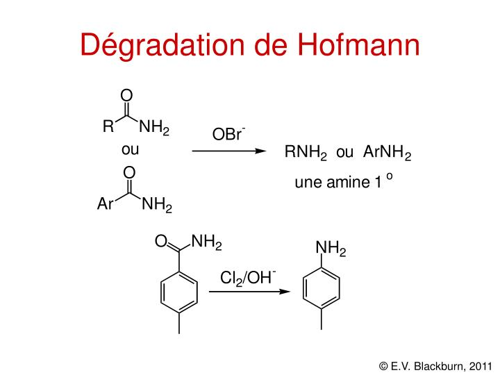 Dégradation de Hofmann