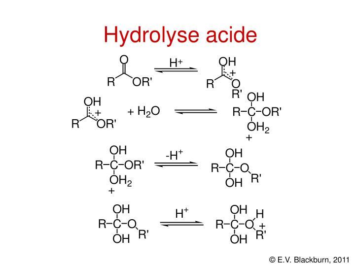 Hydrolyse acide
