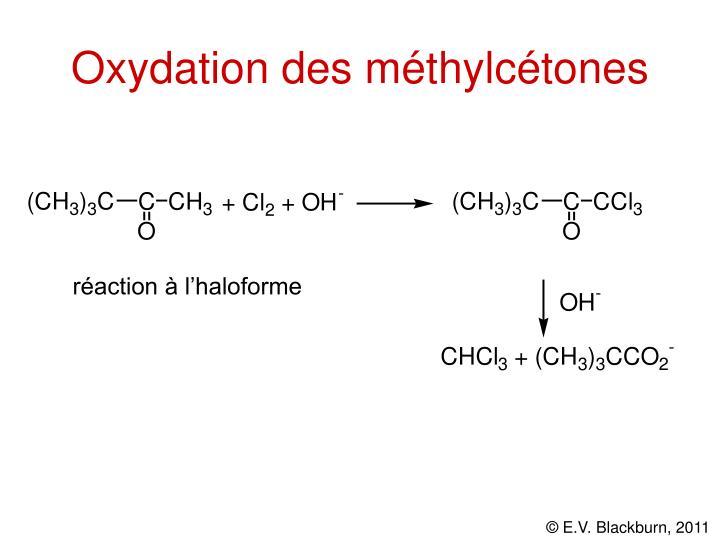 Oxydation des méthylcétones