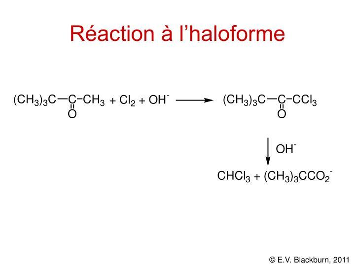 Réaction à l'haloforme