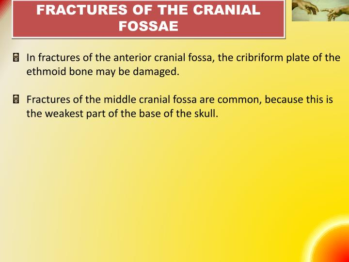 FRACTURES OF THE CRANIAL FOSSAE