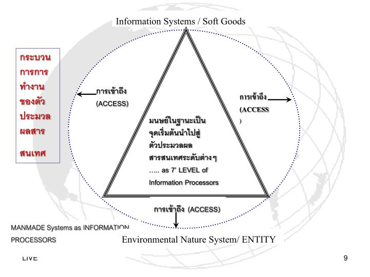 Information Systems / Soft Goods