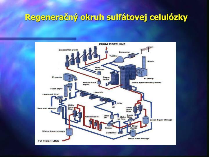 Regeneračný okruh sulfátovej celulózky