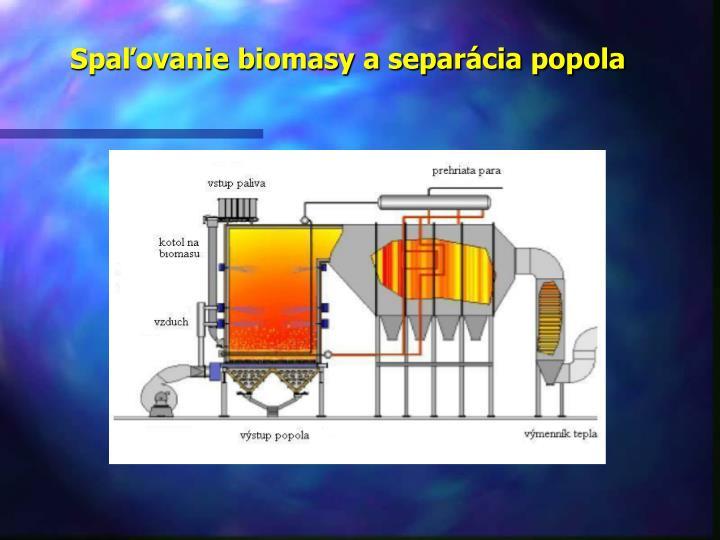Spaľovanie biomasy a separácia popola