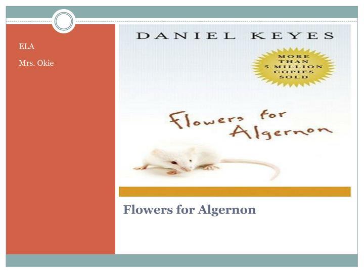 Flowers For Algernon Essays