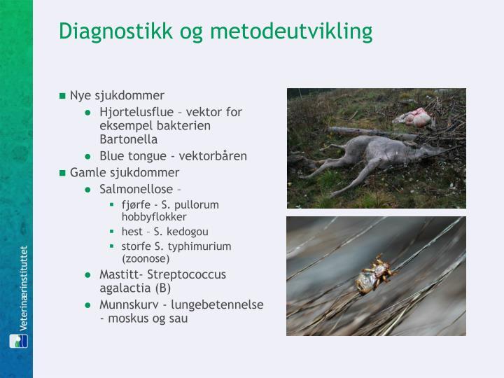 Diagnostikk og metodeutvikling
