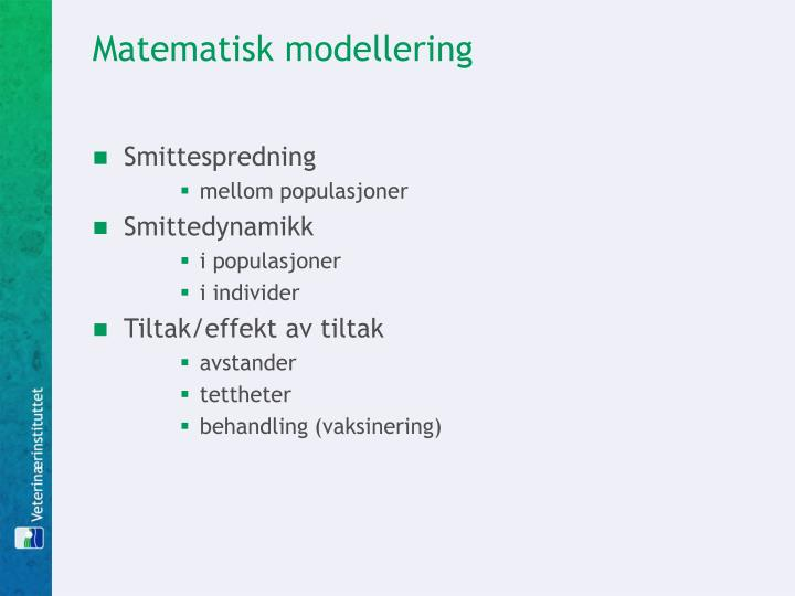 Matematisk modellering