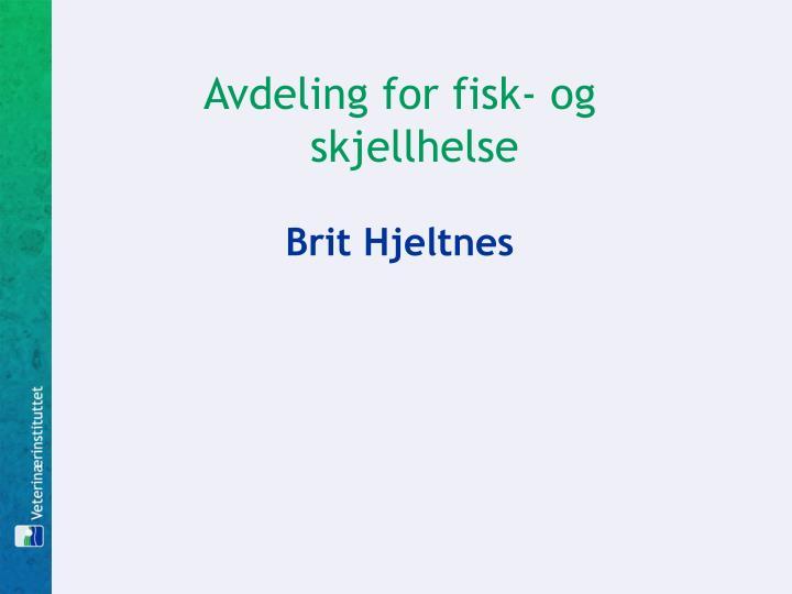 Avdeling for fisk- og skjellhelse
