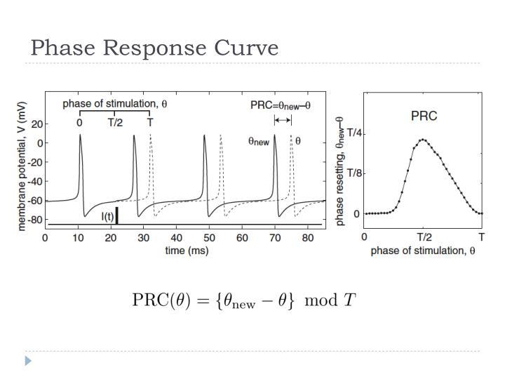 Phase Response Curve