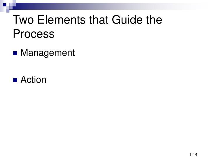 Two Elements that Guide the Process