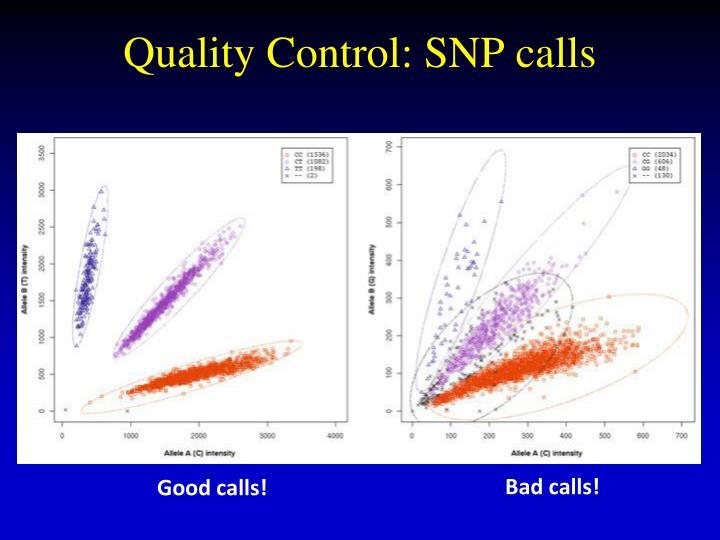 Quality Control: SNP calls