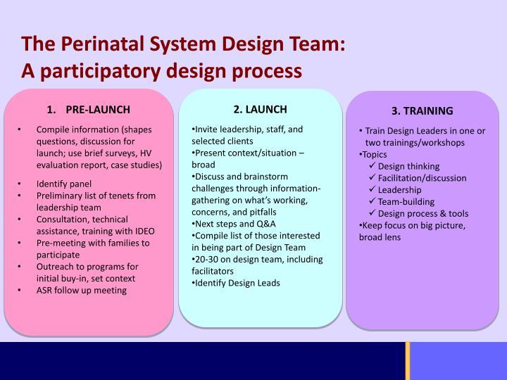 The Perinatal System Design Team: