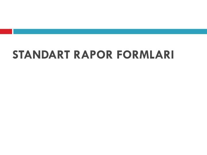 STANDART RAPOR FORMLARI