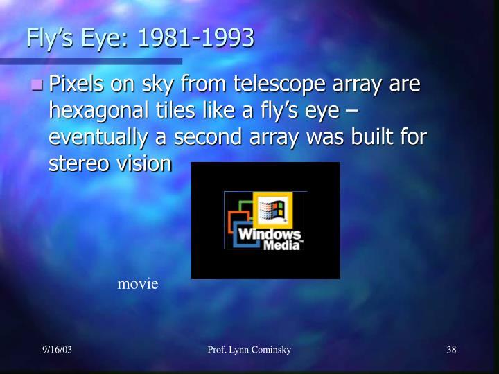 Fly's Eye: 1981-1993