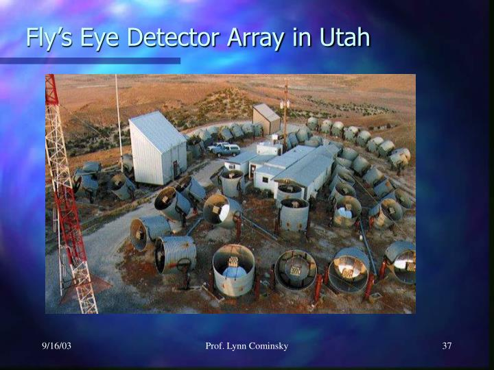 Fly's Eye Detector Array in Utah