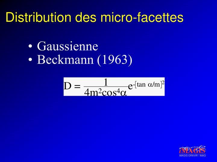 Distribution des micro-facettes
