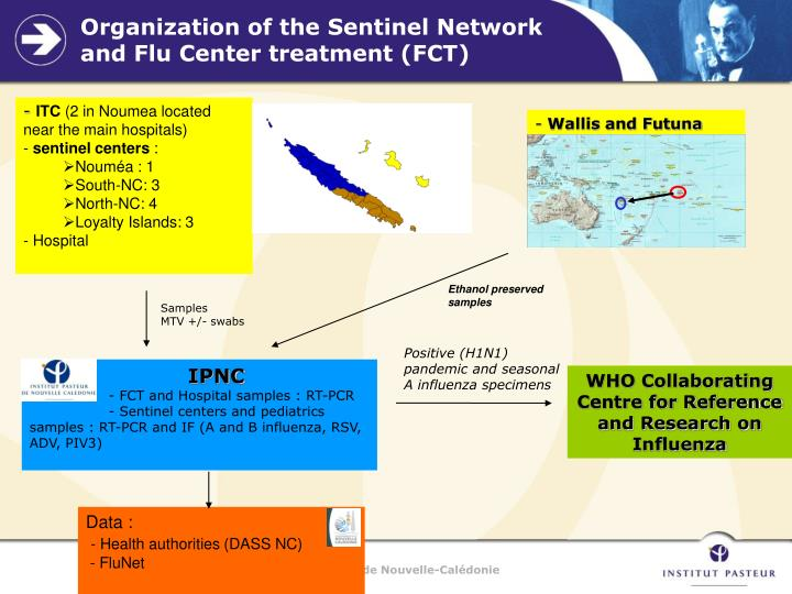 Organization of the Sentinel Network and Flu Center treatment (FCT)